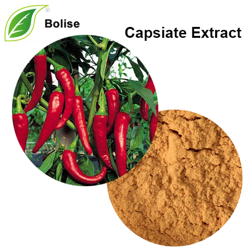 Capsicum Annuum Extract(Capsiate Extract)