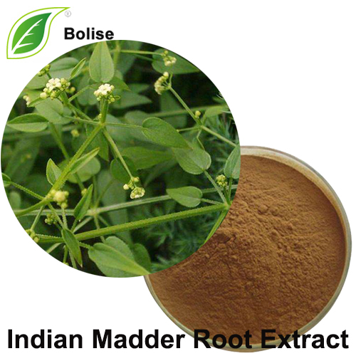 Indian Madder Root Extract