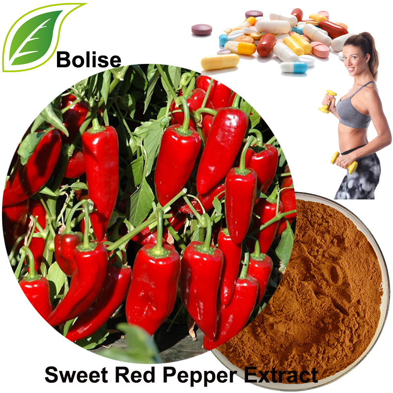 CH-19 Sweet Red Pepper Extract(Capsiate Extract)
