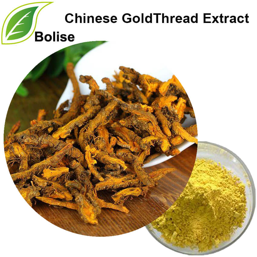 Extract chinezesc GoldThread