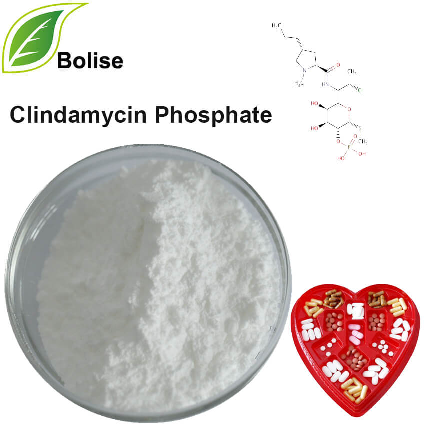 Clindamycin fosfaat