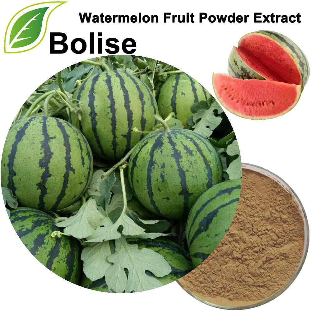 Extrakt z ovocného prášku z melounu