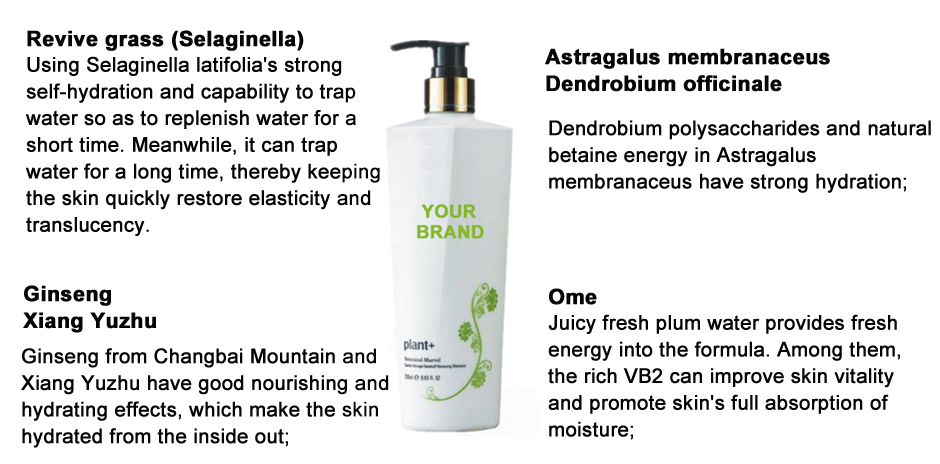 Shampoo detergente antiforfora OEM non siliconico
