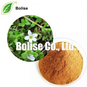 Bacopa Monnieri Extract (Leaf) Bacosides A-B 20%