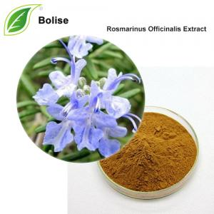 Rosmarinus Officinalis Extract