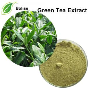 Dry Green Tea Extract