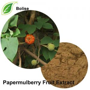 Papermulberry Fruit Extract(Fructus Broussonetae Extract)