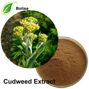 Cudweed Extract