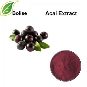 Acai Extract(Brazilian berry extract)