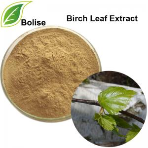 Birch Leaf Extract(Betula Extract)