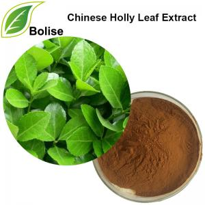 Chinese Holly Leaf Extract