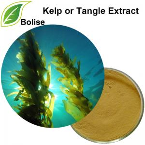 Kelp or Tangle Extract