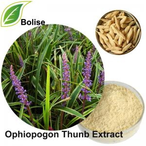 Dwarf Lilyturf Tuber Extract(Ophiopogon Thunb Extract)