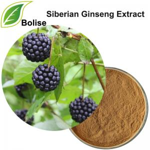 Siberian Ginseng Extract(Eleuthero Extract)