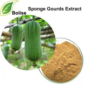 Sponge Gourds Extract(Towel Gourd Extract)