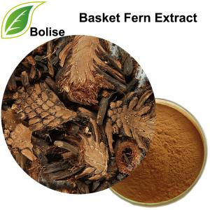 Basket Fern Extract