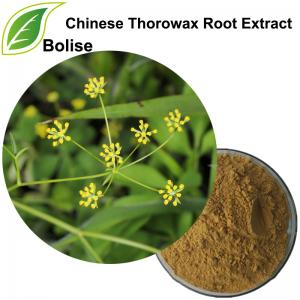 Chinese Thorowax Root Extract(Radix Bupleuri Extract)