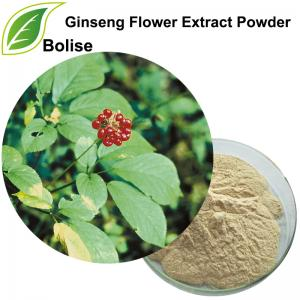 Ginseng Flower Extract Powder