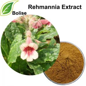 Rehmannia Extract(Chinese Foxglove extract)