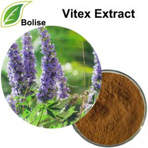 Vitex Extract(Chasteberry Extract)