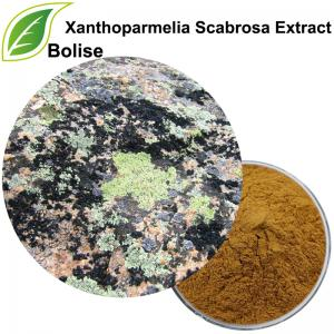 Xanthoparmelia Scabrosa Extract