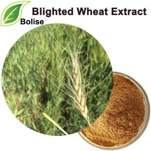 Blighted Wheat Extract