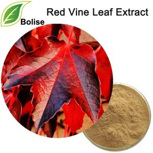 Red Vine Leaf Extract