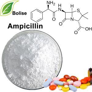 ampisillien