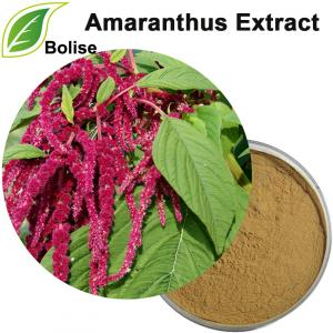 Ekstrak Amaranthus