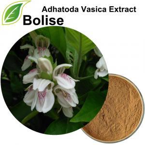 Soosaarida Adhatoda Vasica (Justicia Adhatoda Extract)