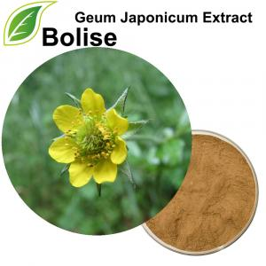 Geum Japonicum Extract (Asian Herb Bennet Extract)