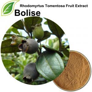 Extrait de fruit de Rhodomyrtus Tomentosa