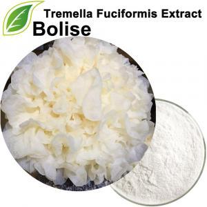 Extrait de Tremella Fuciformis (extrait de Tremella)
