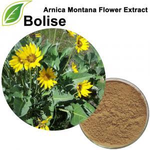 Estratto di Arnica Montana (Estratto di fiori di Arnica Montana)