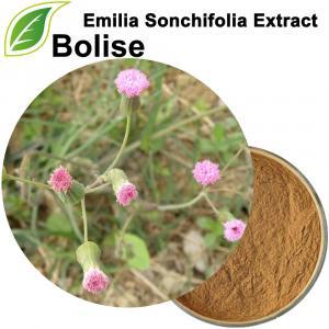 Extracte d'Emilia Sonchifolia