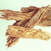 Chinese Eaglewood Extract