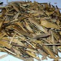 Muira Puama Bark Extract(Potency wood extract)