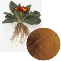 Primula Root Extract