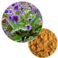 Purpleflower Violet Extract