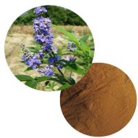 Vitex Agnus Castus Extract(Chaste Berry) Extract Powder