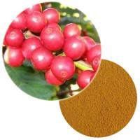 Whole Coffee Fruit Extract Powder