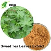 Sweet Tea Leaves Extract