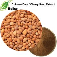 Chinese Dwarf Cherry Seed Extract(Semen Pruni Extract)