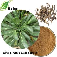 Dyer's Woad Leaf Extract(Folium Isatidis Extract)