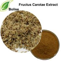 Wild Carrot Fruit Extract(Fructus Carotae Extract)