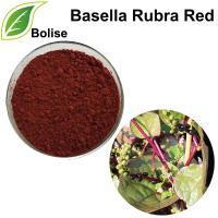 Basella Rubra Rot