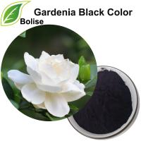 Gardenia Black Color