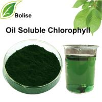 Oil Soluble Chlorophyll