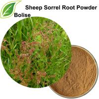 Sheep Sorrel Root Powder