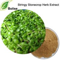 Stringy Stonecrop Herb Extract